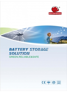 Sealed Lead Acid Battery Catalogue