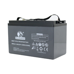 BPD Series -12V 100AH Deep Cycle VRLA Battery