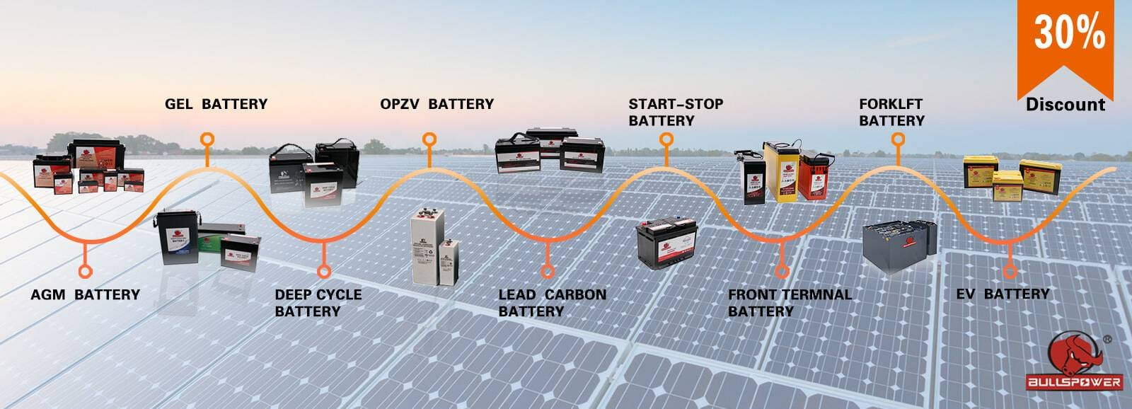 world's leading battery manufacturer