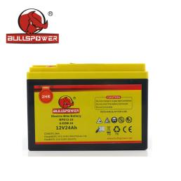 12V 24AH Electric Motorcycle Battery