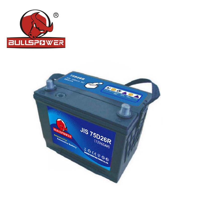 Lead Carbon Battery Company.jpg