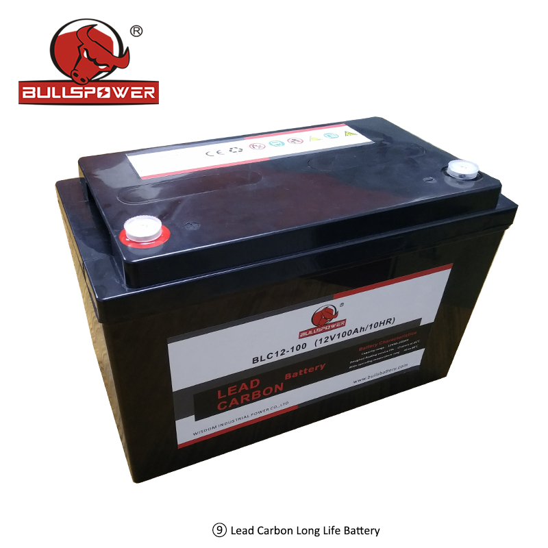 lead carbon battery.jpg